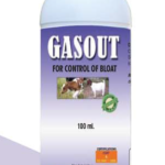 6-Gas-Out